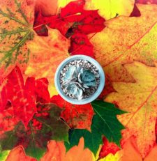 רקע לצילום של DE'ZEN דגם Leaves 4545