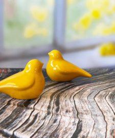 רקע לצילום של DE'ZEN דגם Yellow window 70100
